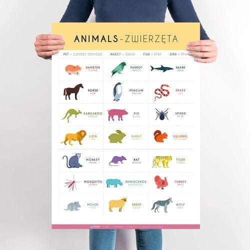 Angielski Słówka Zwierzęta Cz 2 Planszedydaktycznepl